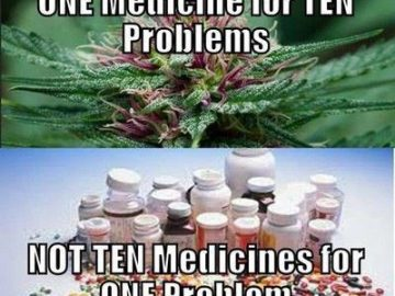 One medicine for ten problems marijuana meme