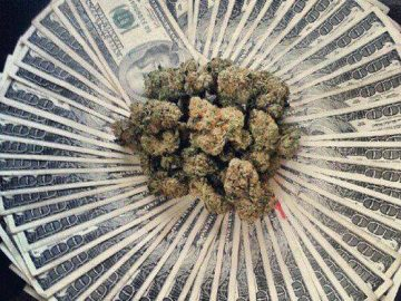 Money or Weed