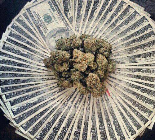 Money or Weed?