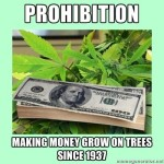 money grow on trees prohibition