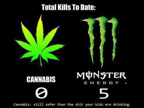 Cannabis Deaths – 0 Energy Drink Deaths-  5
