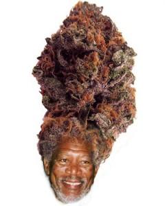 morgan freeman funny weed hair