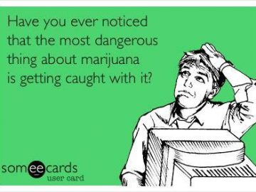 Most Dangerous Thing About Marijuana meme