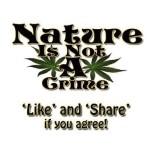 Nature Is Not A Crime cannabis meme