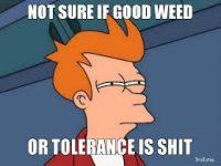 tolerance weed marijuana