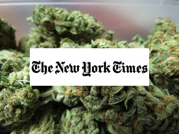 new york times endorse marijuana reform