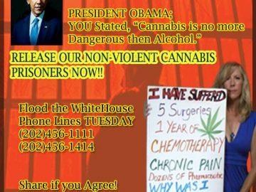 call to action marijuana
