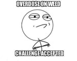 overdose on weed challenge accepted