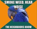paranoid parrot meme marijuana