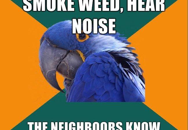 Smoke Weed, Hear Noise