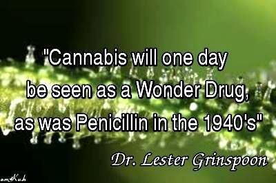 Cannabis A Wonder Drug Quote