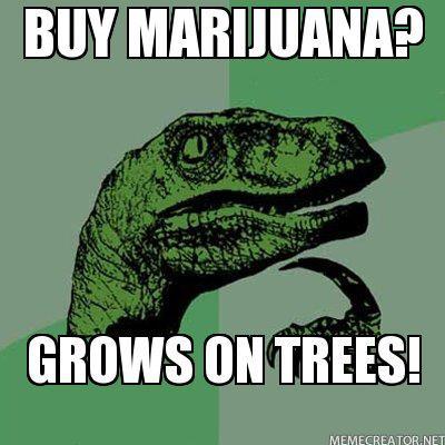 buy marijuana philosoraptor meme