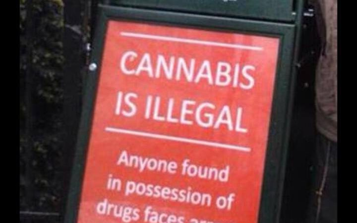 Police cannabis warning signs at  London's 420 festival at Hyde Park