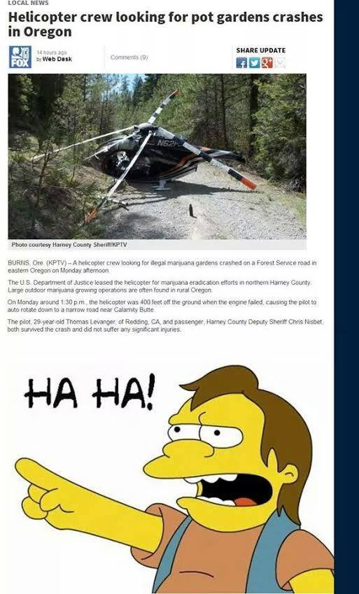 police helicopter crashes marijuana grow op
