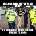 police drugs sniffer dog meme