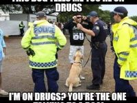 police drugs sniffer dog meme