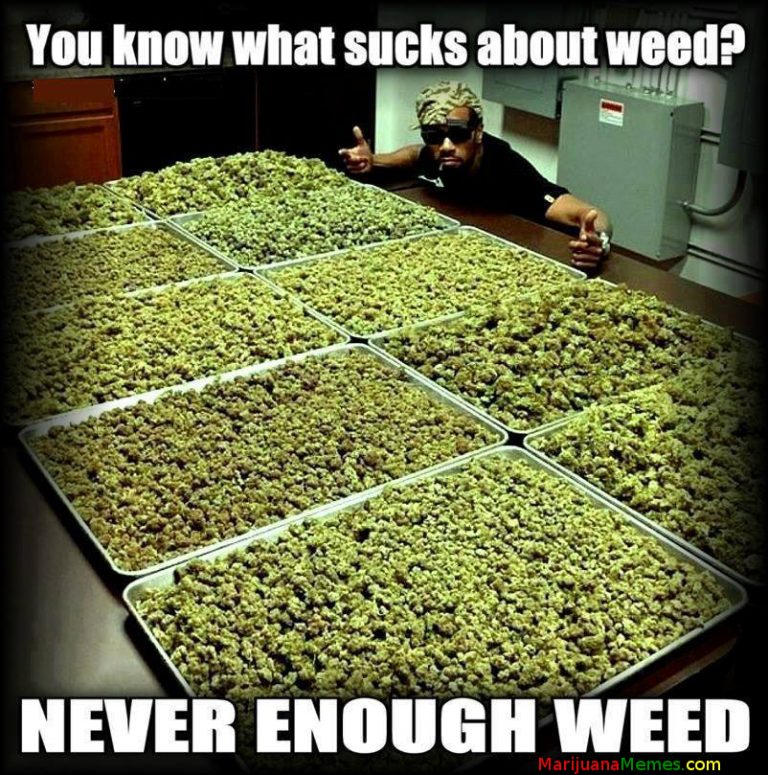 problem with weed never enough