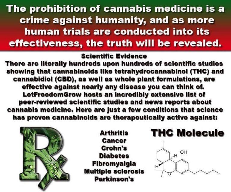 marijuana prohibition crime against humanity