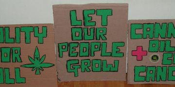 marijuana protest placards