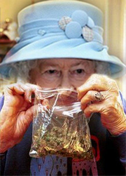 The Queen of England royal cannabis