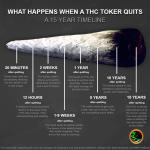 quit smoking timeline