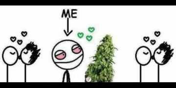 relationship with pot meme