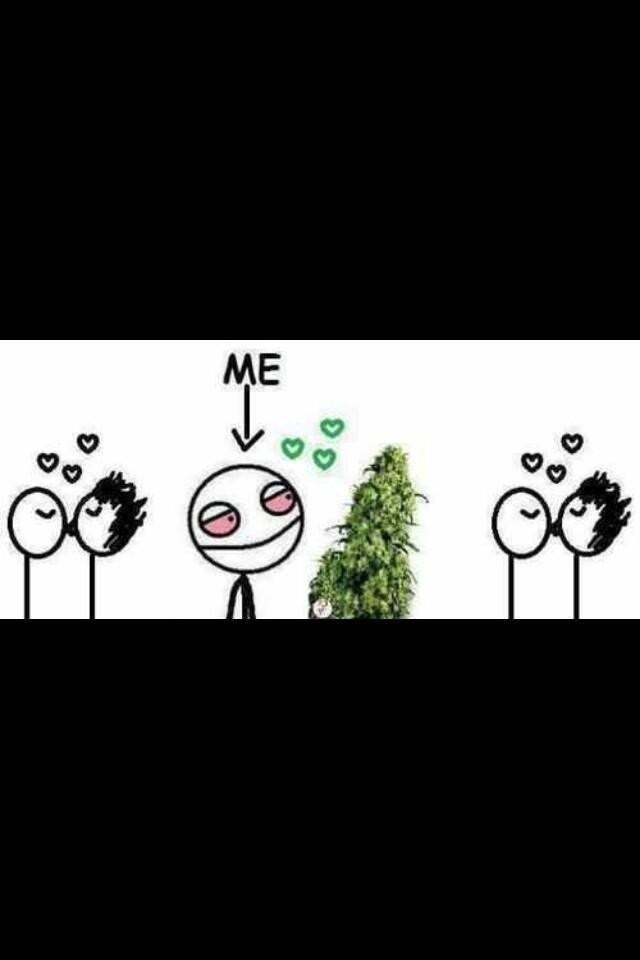 being in a relationship�with weed � marijuana memes