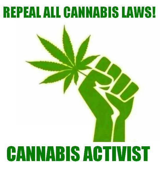 Repeal all cannabis laws