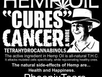 make rick simpson hemp oil