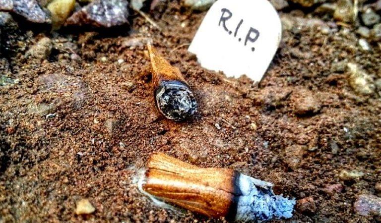 The Blunt Graveyard