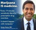 dr sanjay gupta marijuana