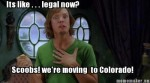 scooby shaggy moving to colorado