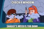 crack a window dank weed