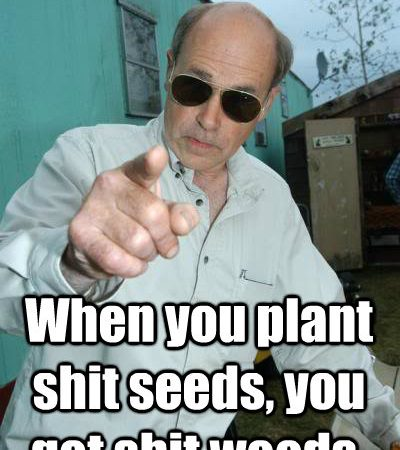 Shit Garden? When you plant shit seeds, you get shit weeds!