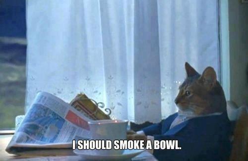 i should smoek a bowl
