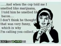 smelled like marijuana bacon cop