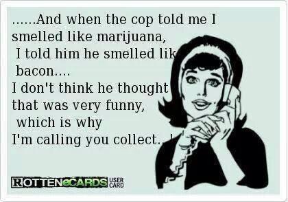 smelled like marijuana bacon cop