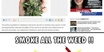 smoke all the weed lung cancer marijuana