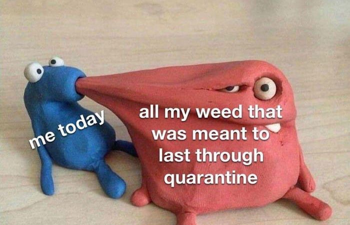 Smoking all your lockdown weed in one day