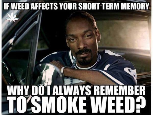 If weed affects your short term memory…