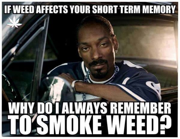 weed affects your memory snoop dogg meme
