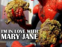 spider-man in love mary jane