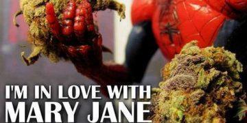 spider-man in love mary jane