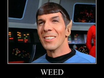 logical weed smoker spock star trek