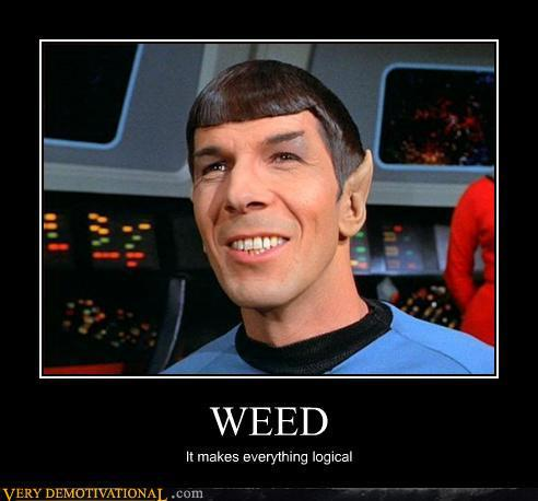 logical weed smoker spock star trek
