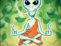 stoned and meditating alien