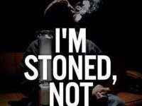 I'm stoned not stupid