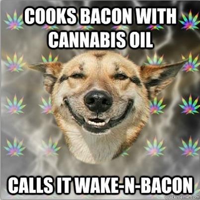 Wake-N-Bacon meme