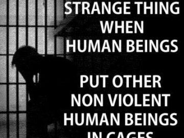 Non Violent Prisoners strange meme