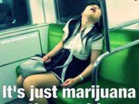 take a dab they said only cannabis meme